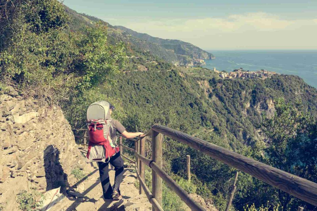 Baby carrier rental for hiking